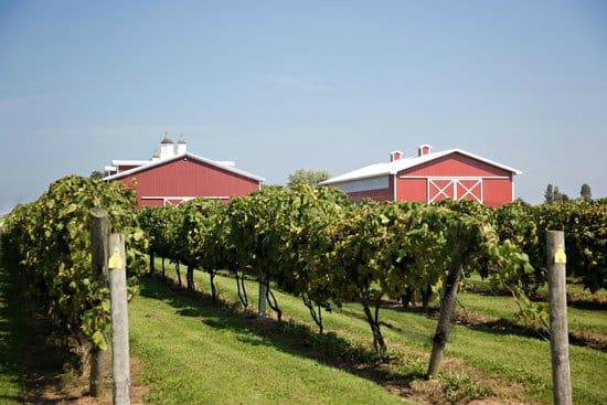 Wineries, Breweries & Distilleries